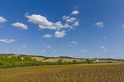 Felder, Wiesen und Windkraftanlagen Stockfotos