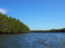 Feldgeistliche-Ramos-Fluss, Chinandega Lizenzfreie Stockbilder