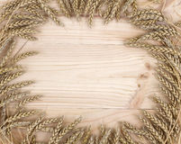 Feldhintergrundohren des Weizens Stockbild
