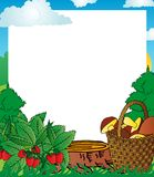 Feldholzfrüchte Stockfoto
