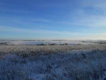 Felds gelados com vapores Fotos de Stock Royalty Free