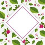 Feldschablone mit rosa Rosen Lizenzfreie Stockbilder
