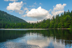 Feldsee in Germany Feldberg Royalty Free Stock Photo