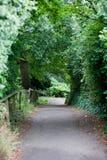 Feldweg in der britischen Landschaft Stockfoto