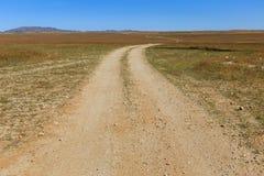 Feldweg in der Steppe, Gobi-Wüste lizenzfreie stockbilder