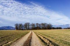 Feldweg im Vorfrühling Stockfoto