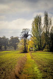 Feldweg im Winter Lizenzfreie Stockfotografie