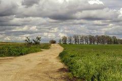 Feldweg mit Bäumen und Wolken Stockfoto