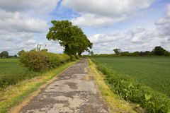 Feldweg und Ackerland im Frühjahr Stockfotos