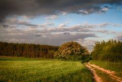Feldweg und bewölkter Himmel Stockbild