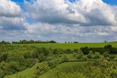 Feldweg unter Wiesen und Feldern lizenzfreie stockfotos