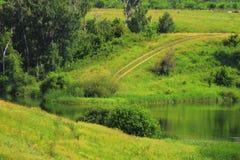 Feldweg zum See Stockbild