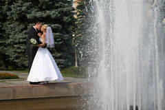 Felice sposato Fotografie Stock