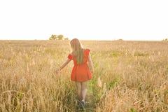 Felicidad, naturaleza, verano, otoño, vacaciones y concepto de la gente - mujer joven en el campo de la parte posterior Fotos de archivo libres de regalías