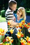 Felicidad positiva del amor del resorte de los tulipanes Imágenes de archivo libres de regalías