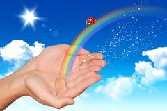 Imagen de archivo libre de regalías