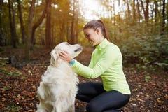 A felicidade é cão das trocas de carícias foto de stock royalty free