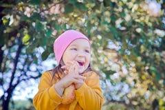 A felicidade Foto de Stock