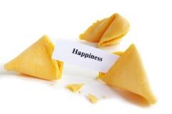 Felicidade do achado Fotografia de Stock