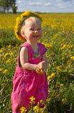 Felicidade do dente-de-leão fotografia de stock