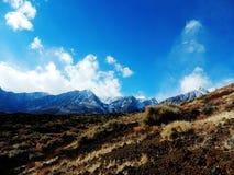 Felicidade do inverno Foto de Stock Royalty Free