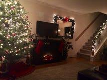 Felicidade do Natal Fotografia de Stock