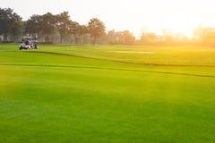 Felicidade dos jogadores de golfe na pista de corridas com a raça imagens de stock royalty free