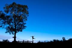 Felicità, libertà, siluetta, paesaggio fotografie stock libere da diritti