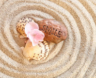 Felicità in un granulo della sabbia Fotografia Stock Libera da Diritti