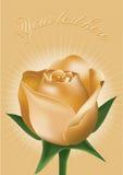 Felicitações às rosas Fotos de Stock Royalty Free