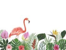 Felicitações botânicas da decoração do projeto do convite do cartão da decoração das decorações das ilustrações da aquarela dos t imagem de stock royalty free