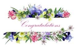 Felicitações com flores da mola Imagens de Stock