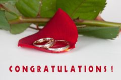 Felicitações do casamento imagem de stock royalty free