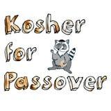 Felicitações no feriado judaico da páscoa judaica com guaxinim dos desenhos animados Fotos de Stock Royalty Free