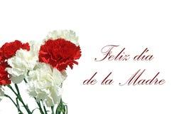 Felicitaciones pora el DÃa De Los angeles Madre przeciwu Foto De Un ramo De Claveles obrazy royalty free