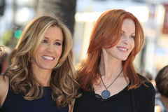 Felicity Huffman, Marcia Cross, William H Macy Stock Photo