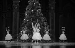 Felik dans för godis - balettnötknäpparen Arkivfoto