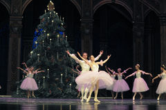 Felik dans för godis - balettnötknäpparen Royaltyfri Bild