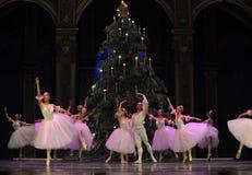Felik dans för godis - balettnötknäpparen Royaltyfria Bilder