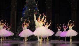 Felik dans för godis det andra för handling för fältgodis i andra hand kungariket - balettnötknäpparen Royaltyfri Bild