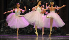 Felik dans för godis det andra för handling för fältgodis i andra hand kungariket - balettnötknäpparen Arkivbilder