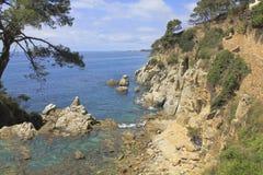 Felik fjärd på den spanska kusten Royaltyfri Fotografi