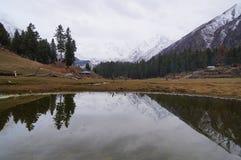 Felika ängar är stället som ser Nanga Parbat Pakistan Fotografering för Bildbyråer