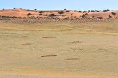 Felika cirklar nära Sesriem Arkivfoton