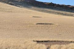 Felika cirklar nära Sesriem Arkivbild