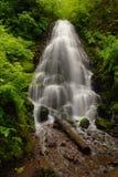 felika falls Royaltyfri Fotografi