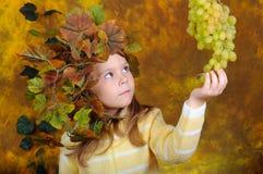 felika lilla druvadruvahänder Royaltyfri Foto