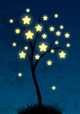 Felikt stjärnklart träd Arkivbild