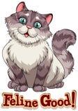 Feline. Cute long hair feline with text Royalty Free Stock Image