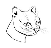 Feline head, black and white dash drawing Royalty Free Stock Images